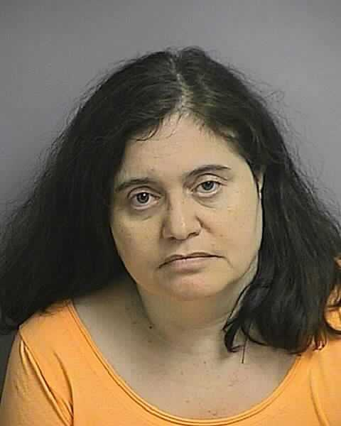 ROHAIDY, HAYDEE: DUI ALCOHOL OR DRUGS 1ST OFFEN