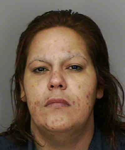 Lydia Santiago: Trafficking in Meth Over 200 Grams&#x3B; Maintaining Vehicle for Drug Use with Minors Present&#x3B; Possession of Marijuana Over 20 Grams
