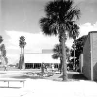 In 1957, the Florida Legislature authorized Daytona Beach Junior College as one of the state's first comprehensive colleges.  The official name of the college was changed from Daytona Beach Junior College to Daytona Beach Community College in 1971, and in 2008 the name was changed to Daytona State College.  The photo shows the campus in 1970.