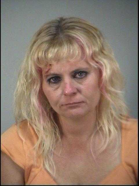 TAMMY SIKES: VEH THEFT GRAND THEFT OF MOTOR VEHICLE