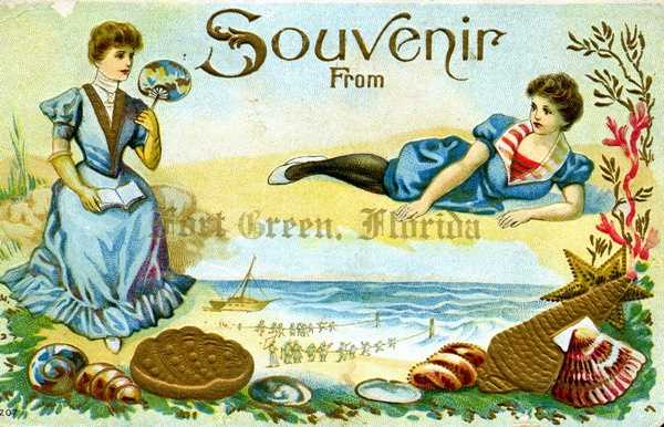 This souvenir postcard from Fort Green was postmarked 1911.