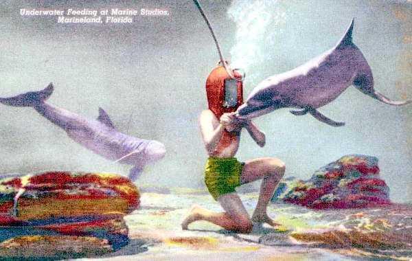 Feeding the underwater marine life at Marineland in 1940.