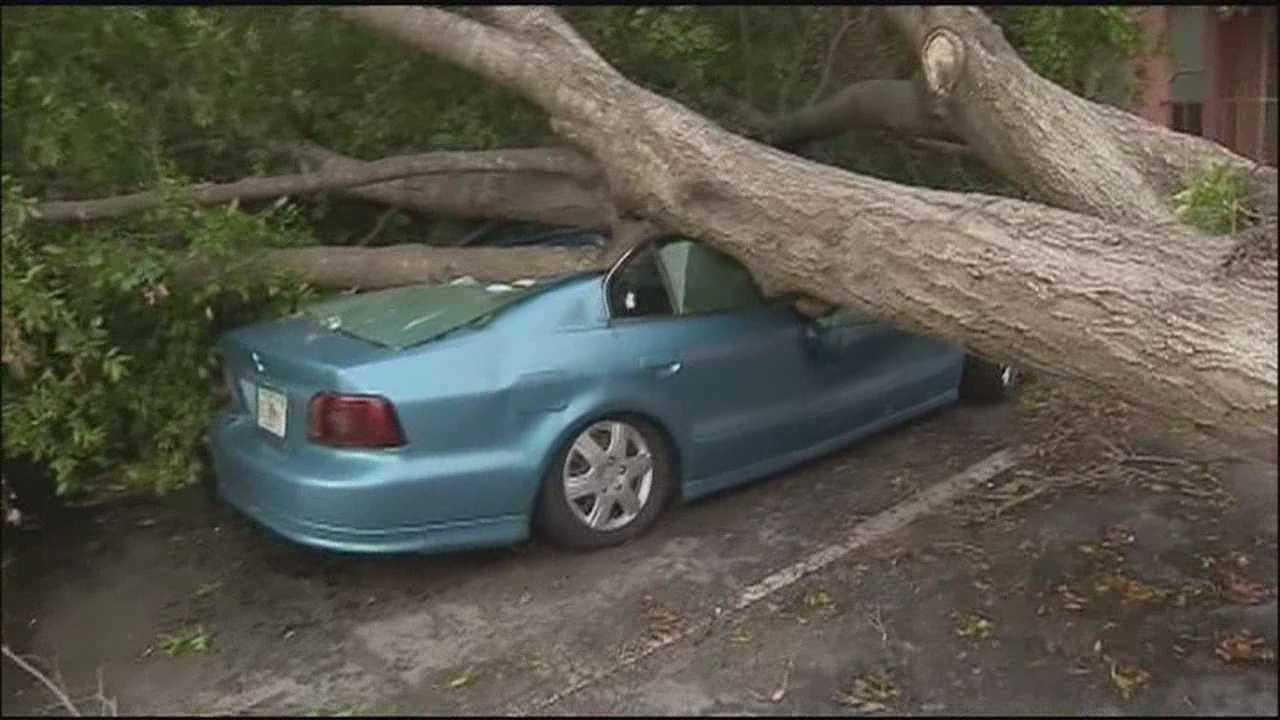 Storm damages homes and cars and knocks over trees in Windremere, Orange County