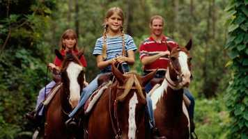Tri-Circle-D Ranch Horseback Riding: Mosey along on these beautiful horses and explore the wilderness for a family-fun ride.Price: $46 for 45 minutesLocation: The Campsites at Disney's Fort Wilderness Resort