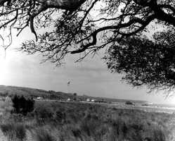 Anastasia State Park (St. Augustine) - 1969
