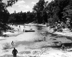 Blue Spring State Park (Orange City) - 1961