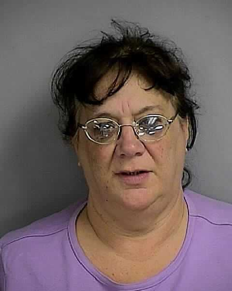 Deborah Ann Farinella: GRAND THEFT >$300<$5,000, PETIT THEFT 2ND OFFENSE, PETIT THEFT 3RD OR SUBSQ OFFEN