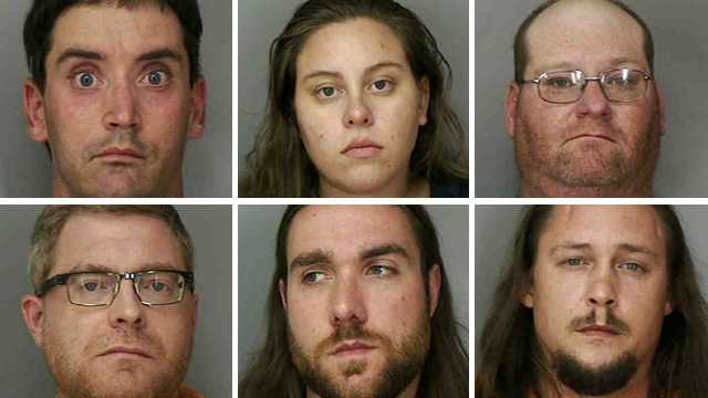 Forty-one people were arrested as part of an online sex sting in Polk County that was set up by 12 law enforcement agencies, deputies said.