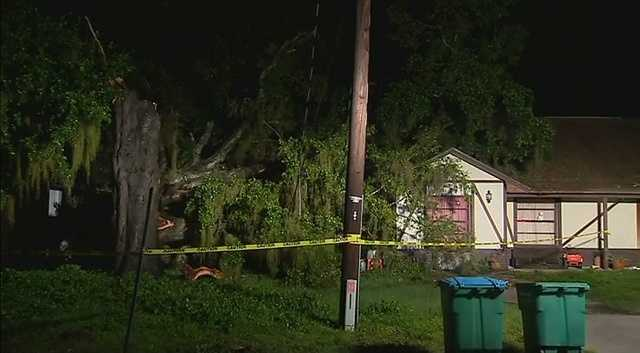 No one was injured when a tree fell on a home in Longwood on Monday night.