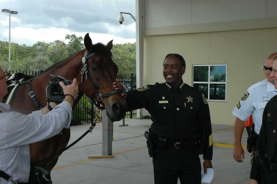 A thoroughbred named Roman officially retired from the Orange County Sheriff's Office Mounted Patrol Unit on Wednesday.