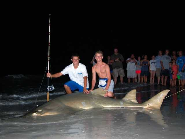 Two Ormond Beach teenagers hooked a 350-pound sawfish and reeled it in off the beach of Sanibel Island.