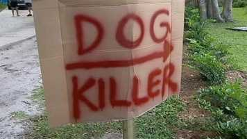 "A Seminole County man is labeling his neighbor a ""dog killer"" after the deputy shot his pet to death while off-duty."