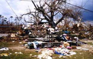 1992: Hurricane Andrew caused $26,500,000,000 in damage.