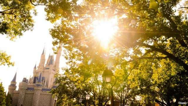 Florida's sunshine isn't to be complained about, but sometimes the heat has theme park guests ready for reprieve. That's when a long, air-conditioned wait for a ride isn't so bad. See the best areas for cooling off at the Magic.