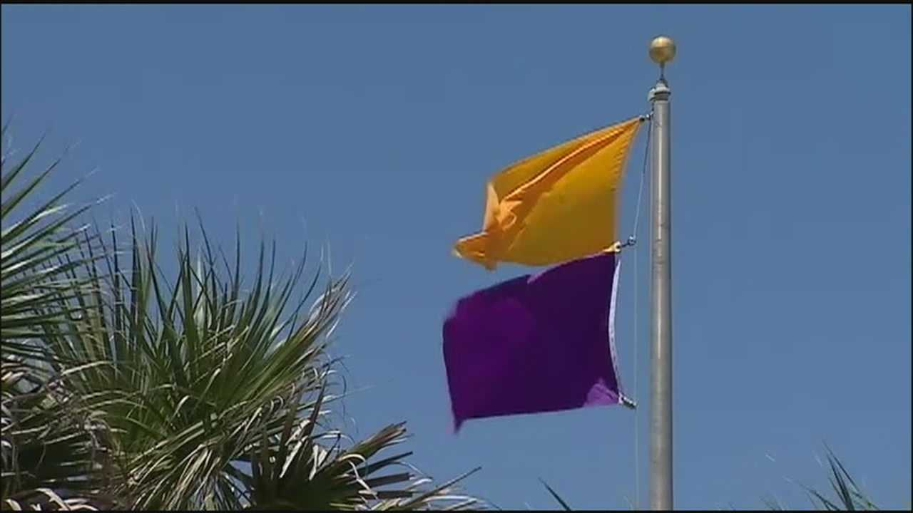 A purple flag is flying on Daytona Beach, warning beachgoers of clear jellyfish in the water.