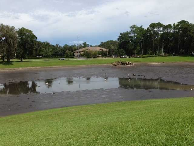 A sinkhole swallowed almost all the water from a five-acre pond in a neighborhood in Ocala on Tuesday afternoon.