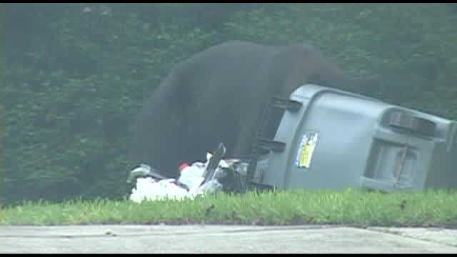 A bear in the Sweetwater neighborhood of Longwood got the attention of neighbors Monday morning.