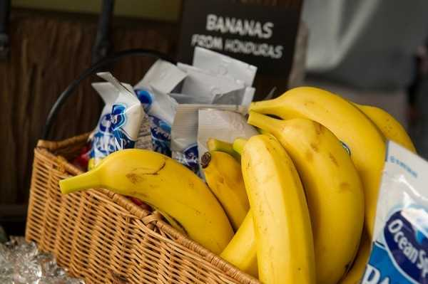 The new stand is just one of many places where guests can enjoy healthier snacks.