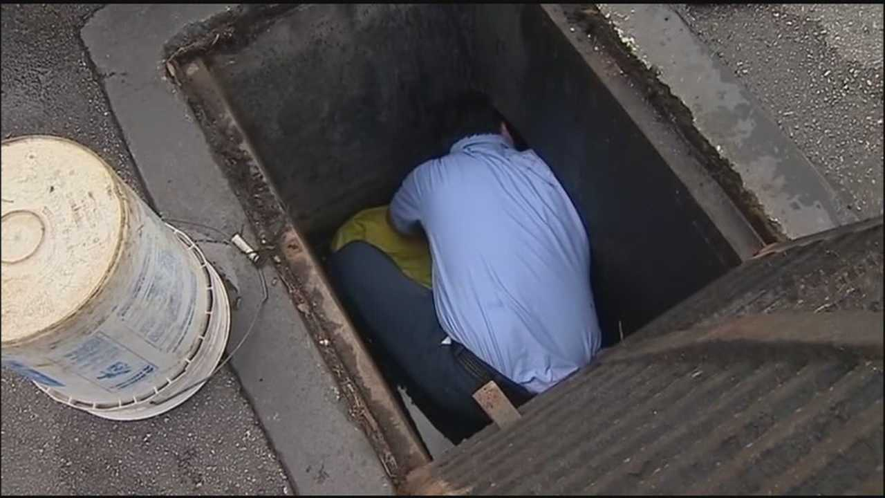 On his birthday, a utility worker went into a storm drain to free stuck ducks.