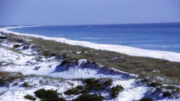 Coastline of the Cape Canaveral National Seashore beach.
