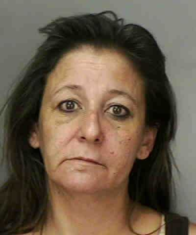 BOZEMAN, TINA RENEE: BATTERY-ON PERSON 65 YEARS OF AGE OR OLDER