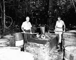 1951: A moonshine still in Tallahassee is destroyed.