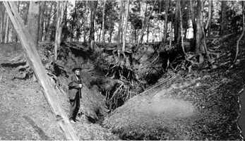 Rev. James Holland at a cascade near Jackson Bluff Road and Cascade Road, Leon County in 1920s.