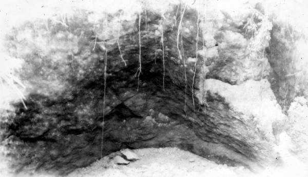 A sinkhole formed on a farm of the Federal Correctional Institution near Tallahassee in 1942.