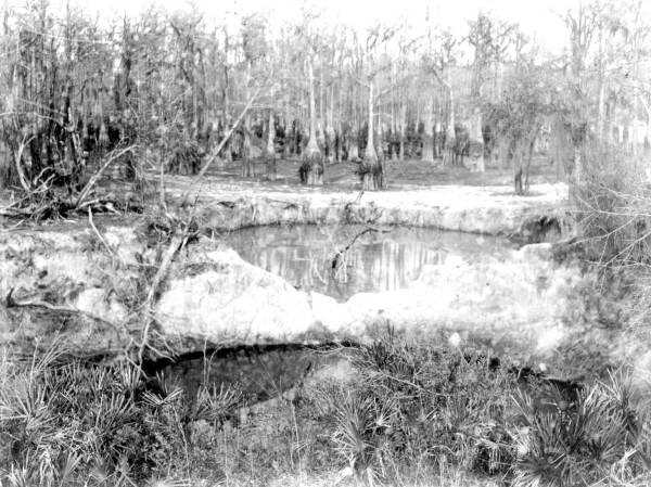 Two sinkholes in the Lake Bradford region in 1932.