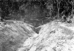 A drainage ditch leading to two sinkholes bordering the Great Wall Sink, Sumterville in 1929.