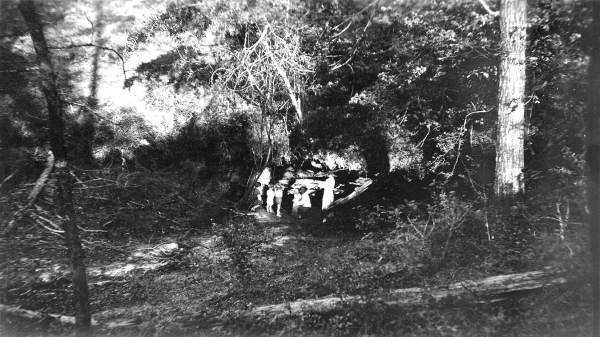 A gopher sinkhole in 1936.