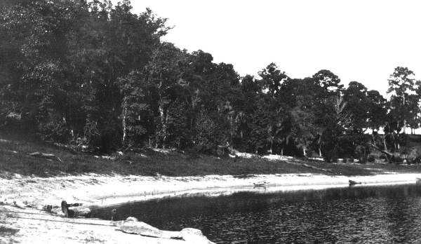Lake Lafayette at the site of a sinkhole in 1909.