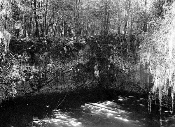 Limestone sinkholes in Thompson's Field, Sumterville in 1908.