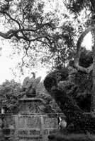 An eagle statue in the garden.  Photograph taken in 1986.