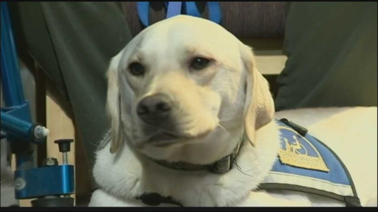Canine Companions graduate