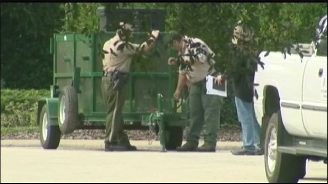 Officials euthanized another bear in the Seminole County neighborhood where a woman was attacked last week.