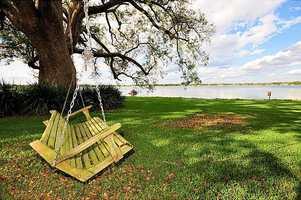 Romantic tree swing.