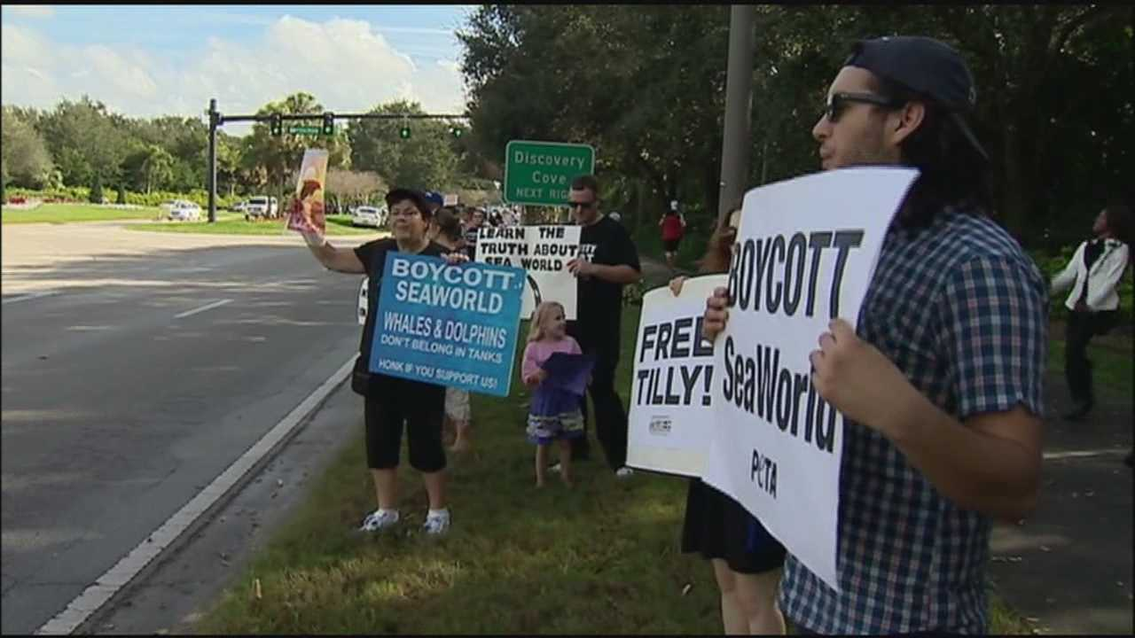 Animal-rights activists gathered outside SeaWorld on Sunday to rally against the way they say the theme park treats its animals.