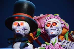 """The 2014 Mardi Gras Parade at Universal Studios has new floats that celebrate Jules Verne's novel, """"Around the World in Eighty Days."""""""