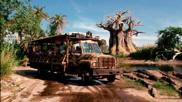 26. Kilimanjaro Safaris: Experience the home of exotic animals like lions and elephants during a tour of an African savannaLocation: AfricaHeight: Any