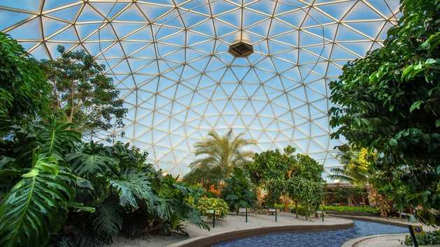 21. Living with the Land: Guests can take a tour through the Epcot's living laboratories and see 9-pound lemons, Mickey-shaped pumpkins and more.Location: Future WorldHeight: Any