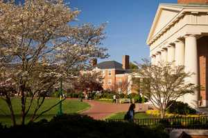 7. Brett graduated from Wake Forest University in 2003.