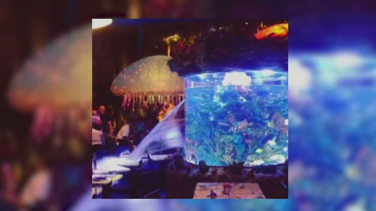The aquarium at the T-Rex Cafe in Downtown Disney burst during dinner Monday night.