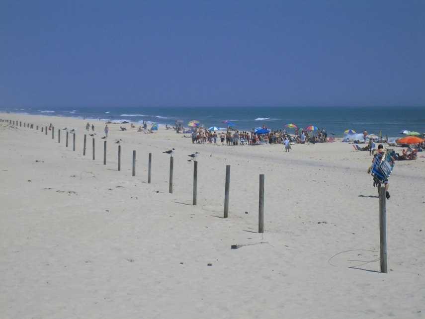 23. Assateague Beach, Assateague Island, Virginia