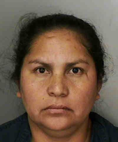 Ma-Concepcion Lopez: engaging in a continuing criminal enterprise, conspiracy to traffic in methamphetamine over 200 grams, trafficking in methamphetamine over 200 grams, unlawful transportation of currency, $100,000 or more and possession of a place or structure used for trafficking in a controlled substance15725194