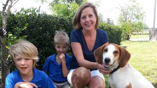 Percival & his new family MW.jpg