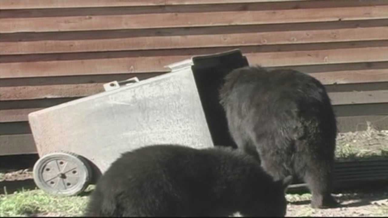 Seminole County has voted to increase the size of trash cans that people can use to encourage them to buy bear-resistant trash cans.