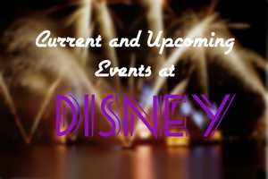 There's always new and exciting events taking place at Disney. Here are several things you can do during your visit.