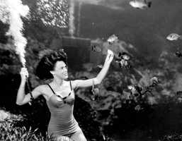 A mermaid feeds fish within the 538-acre park in 1948.