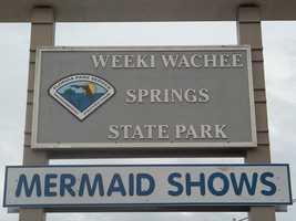 Weeki Wachee became a state park in November 2008.